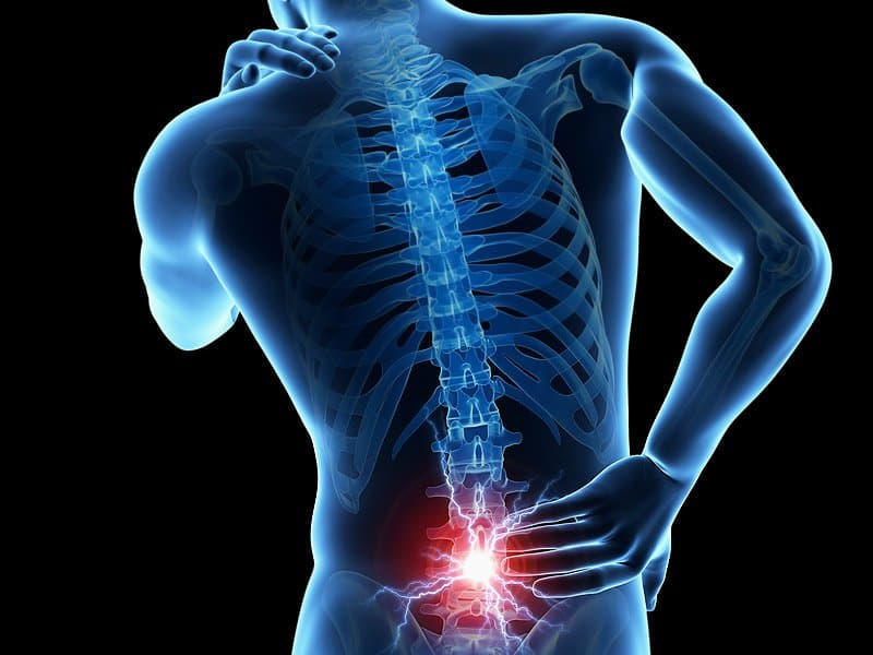 (10 Sep) How to Manage and Prevent Low Back Pain (Seminar)